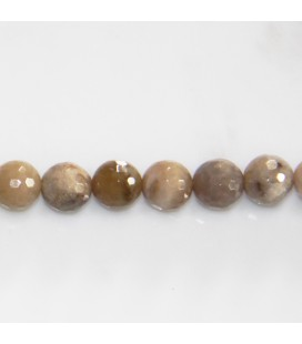 BeauMonde Jewelry - Agate 8 mm ocean fossil round faceted