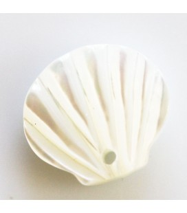 BeauMonde Jewelry - White mother-of-pearl 11 mm shell 1 hole
