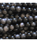 Obsidienne silver 6 mm perle ronde Mexique