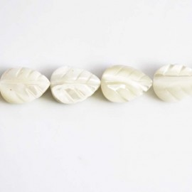 Nacre 16x12 mm feuille blanche