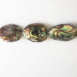 Abalone 25X18 mm environ galet