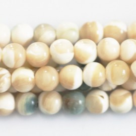 BeauMonde Jewelry - Bead 5.5/6 mm mother-of-pearl beige/green round