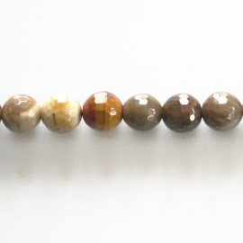 Petrified wood 8 mm round faceted bead Madagascar