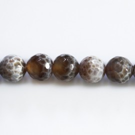 Agate 10 mm round faceted bead